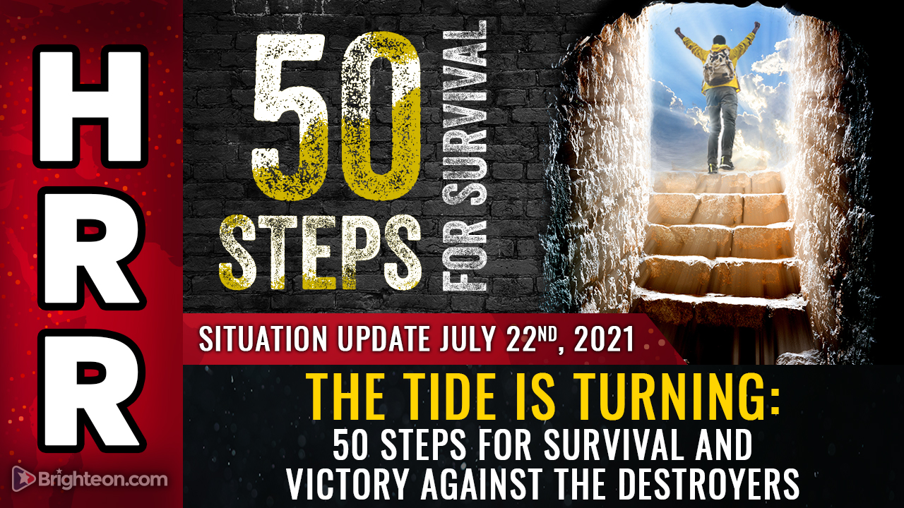 Image: The tide is turning: 50 steps for survival and VICTORY against the destroyers